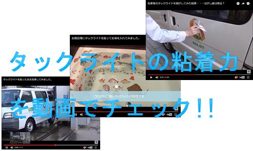 タックライトの動画を見に行く!!